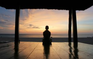 reduce stress, Zenulife